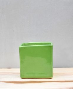 Ceramic Cube Pot 4 inch Parrot Green 1
