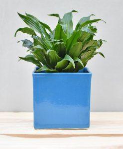 Ceramic Cube Pot 4 inch Sky Blue