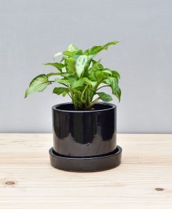 Ceramic Cylinder 4 inch with Plate Black