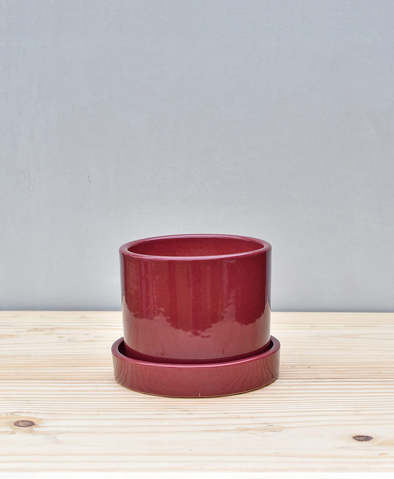 Ceramic 4 inch Cylinder Pot Maroon