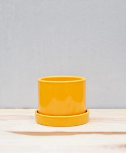 Ceramic 4 inch Cylinder Pot with Plate Mustard Yellow 1