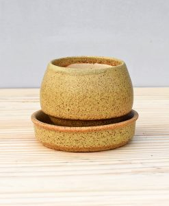 Ceramic Egg Pot 2.5 inch Pastel Green 2
