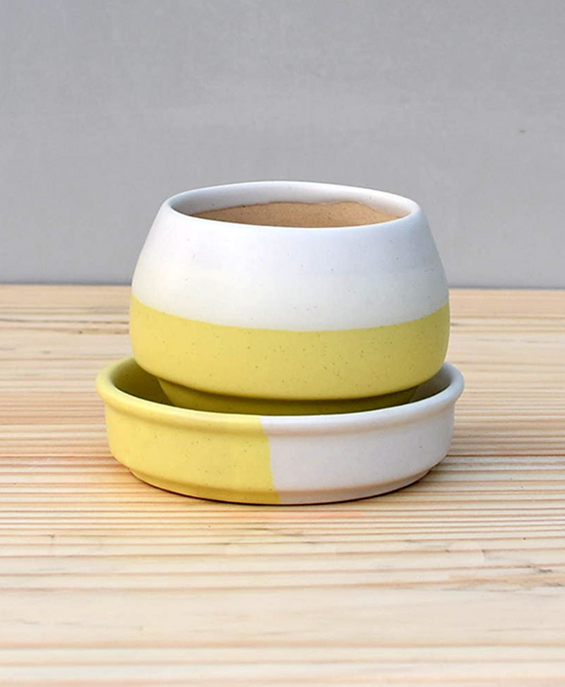 Ceramic Egg Pot 2.5 inch Pastel Yellow