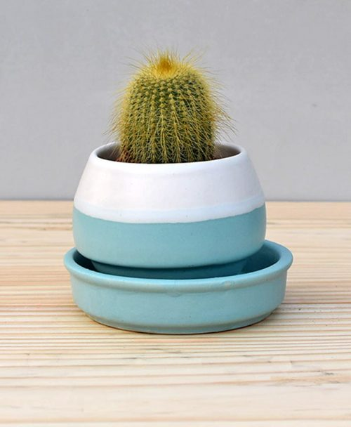 Ceramic Egg Pot 2.5 inch Sky Blue