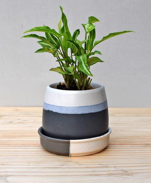 Ceramic Jar Pot 3 inch Black