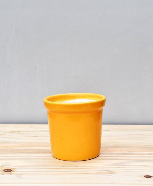 Ceramic Rim Pot 4 inch Mustard Yellow 1