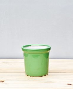 Ceramic Rim Pot 4 inch Parrot Green 1