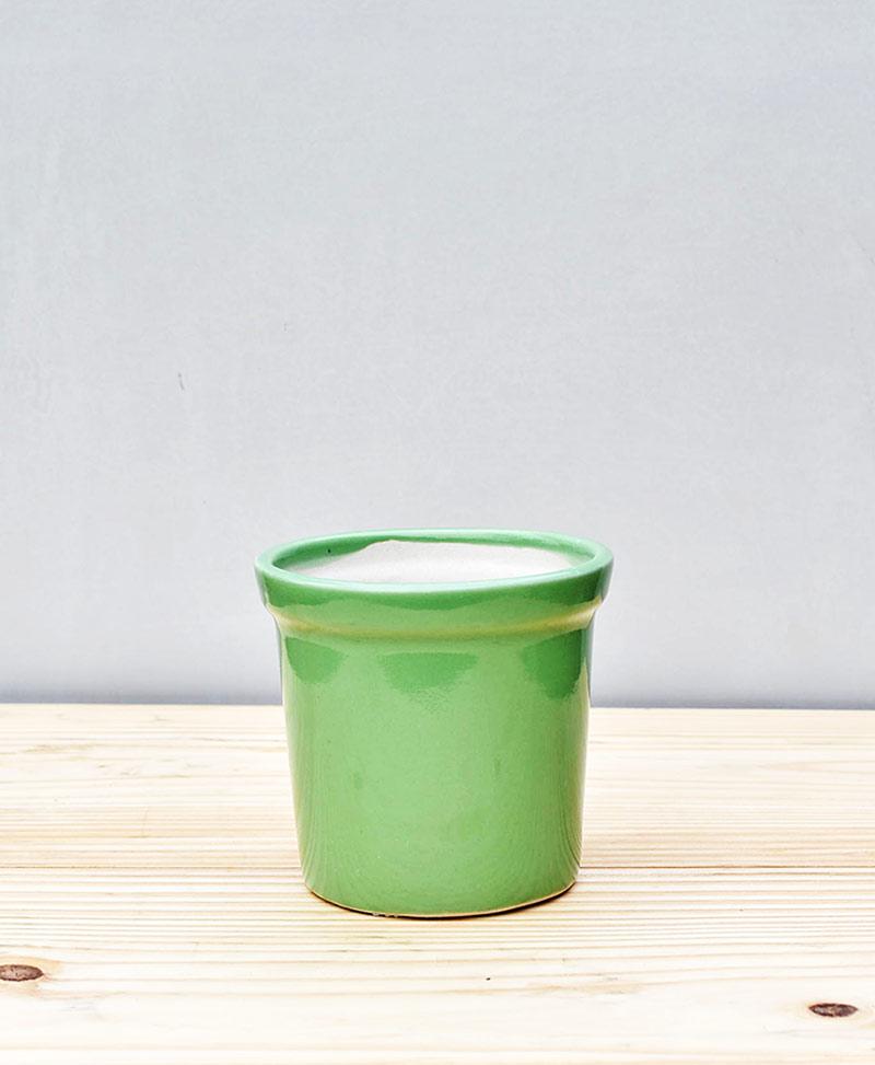 Ceramic Rim Pot 4 inch Parrot Green