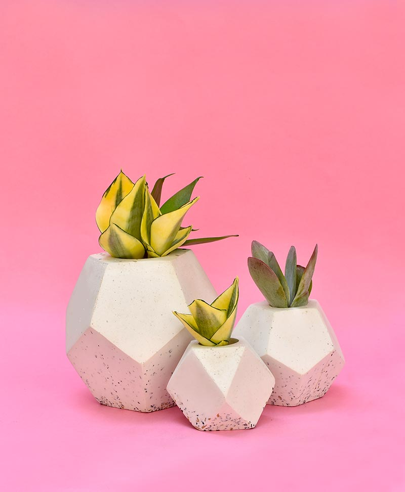 Cluster of Geometric Concrete Planter Dodecahedron