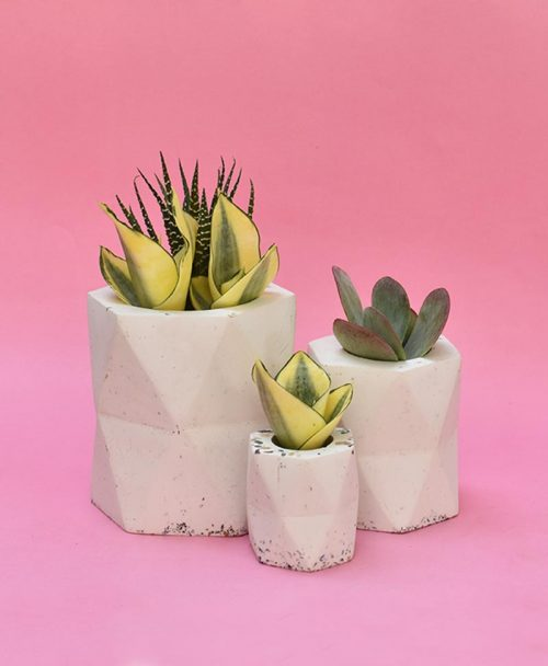Cluster of Geometric Concrete Planter Hexagon