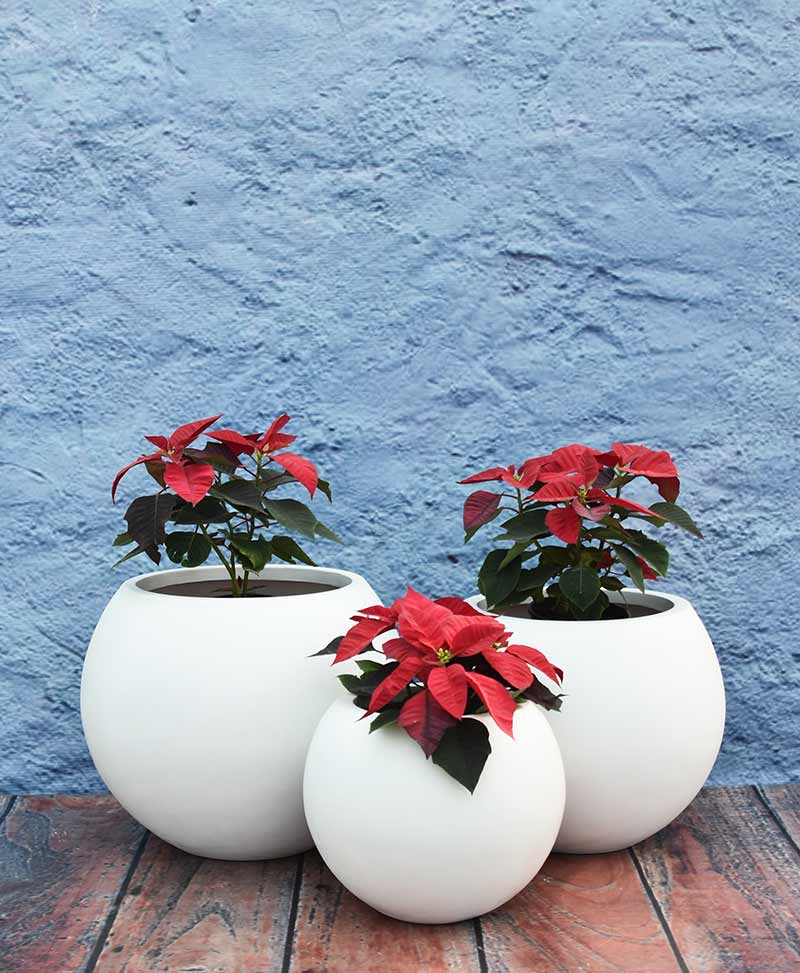 Cluster of Ball Shape Planters