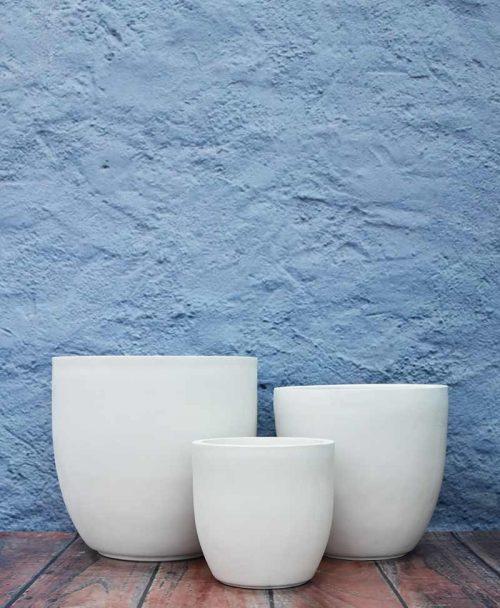 Cup Shape Planters