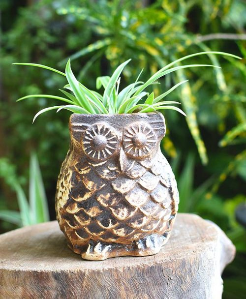 Ceramic Designer Owl Planter Coffee Brown Color 4 inch