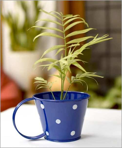 Buy Metal Cup Polka Planter Blue