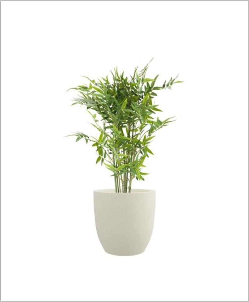 Cup Shape Fiber Planter 12 inch