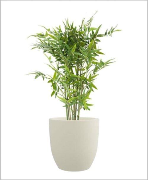 Cup Shape Fiber Planter 15 inch