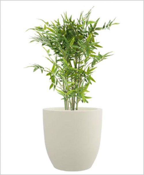 Cup Shape Fiber Planter 24 inch