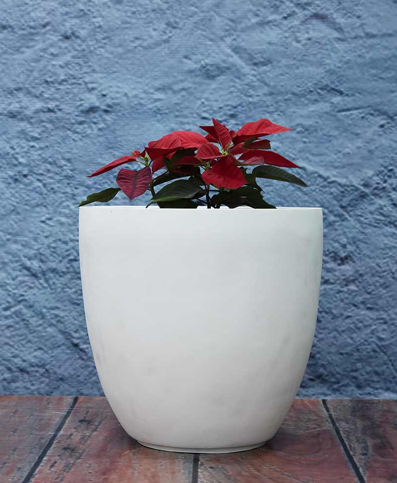 Cluster of Cup Shape Planters, Indoor - Outdoor Fiber Planters