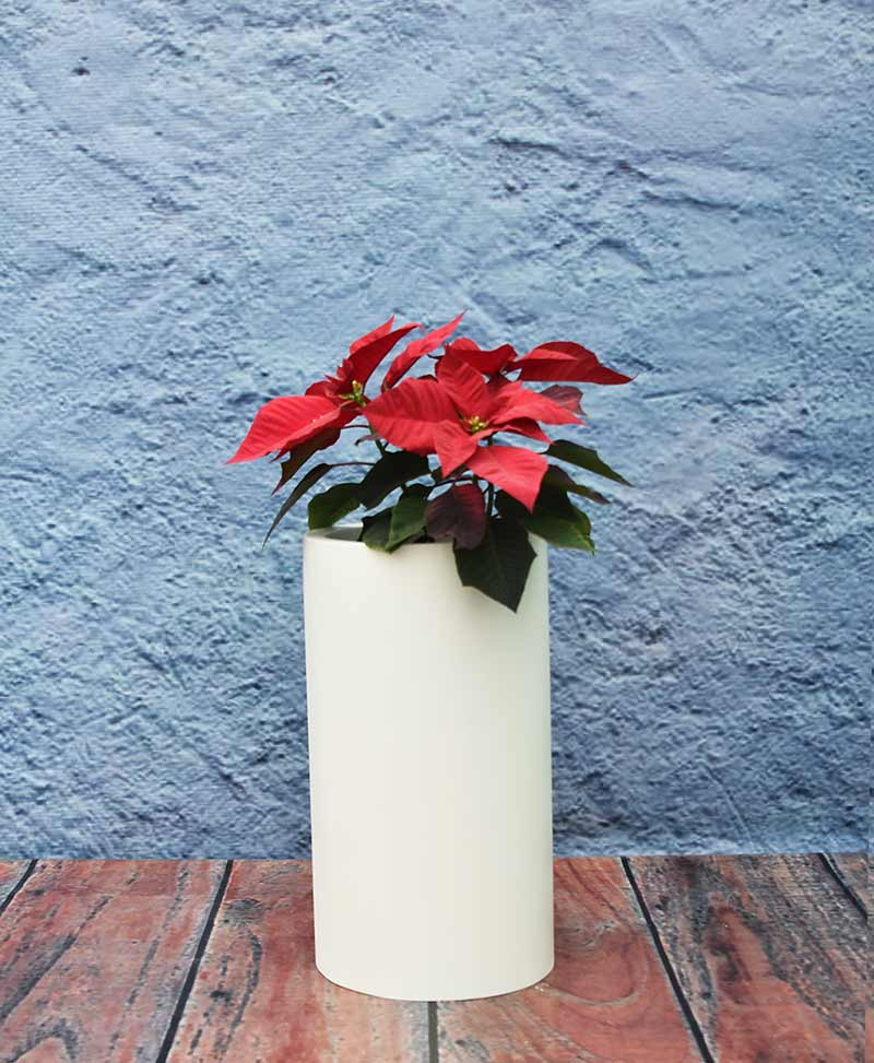 Compact Cylindrical Planter 18 Inch, Indoor – Outdoor Fiber Planters