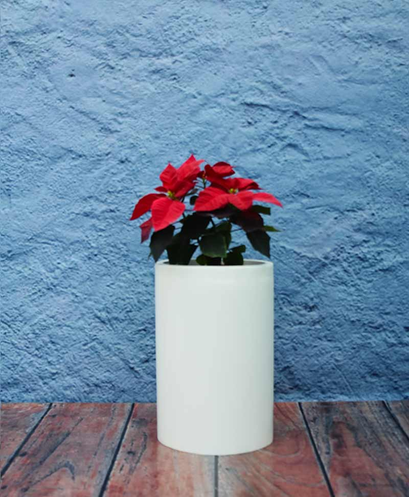 Cylindrical Planter 18 Inch