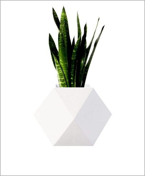 Decorative Fiber Planter 14 inch Star Shape Indoor