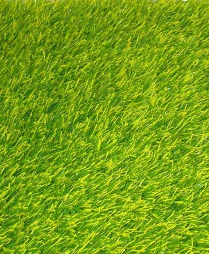 Ebra Paradise 25MM Artificial Lawn Grass - Artificial Carpet Grass (Turf Grass 25MM)