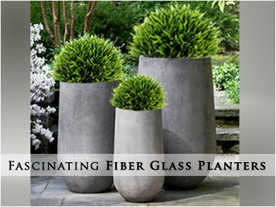 Shop Premium Quality Fiber Glass Planters