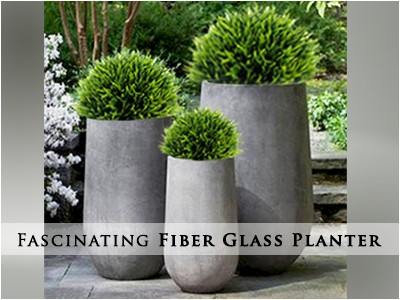 Premium Fiber Glass Planters