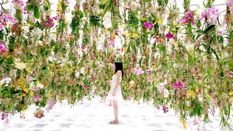 Floating Flower Garden Japan credits @ laughingsquid.com