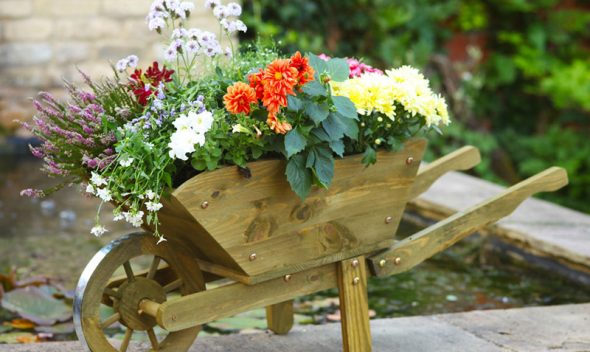 10 amazing ideas for creating garden on wheels