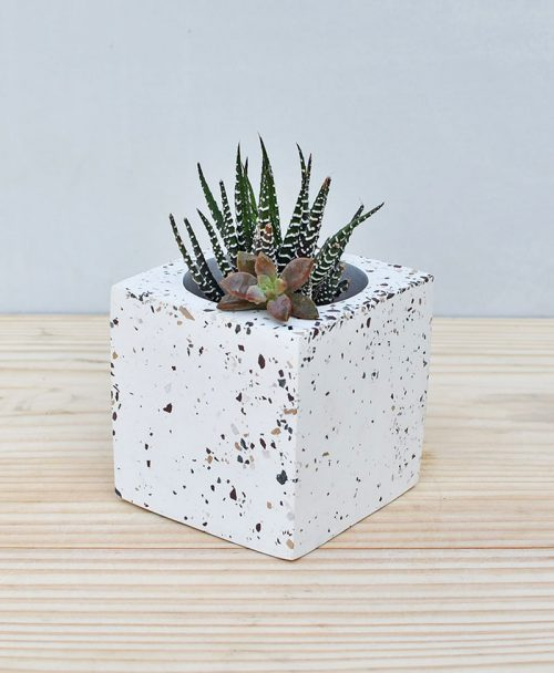 Geometric Concrete Planter Cube