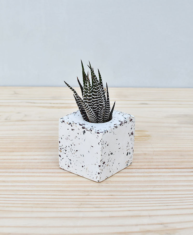 Geometric Concrete Planter Cube Mini