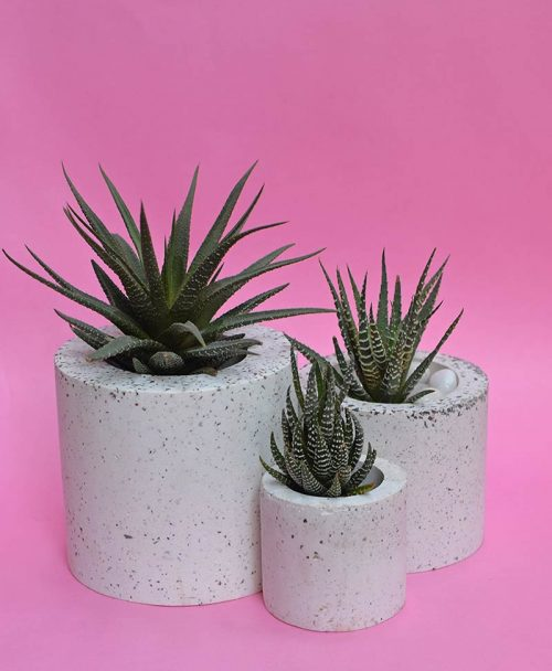 Cluster of Geometric Concrete Planter Cylinder 1