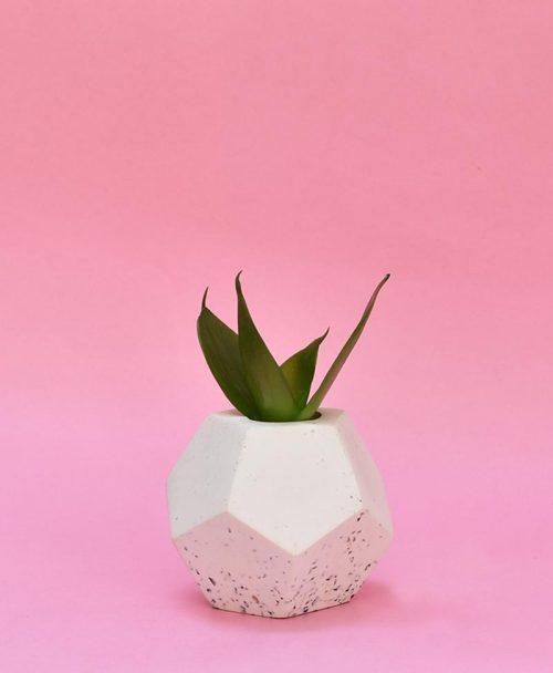 Geometric Concrete Planter Dodecahedron
