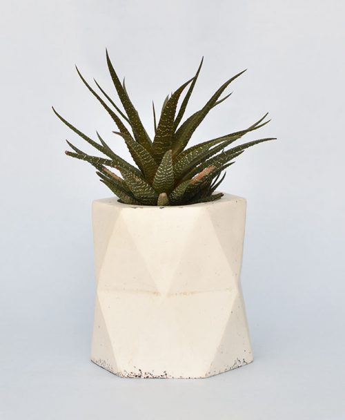 Geometric Concrete Planter Hexagon Large 1