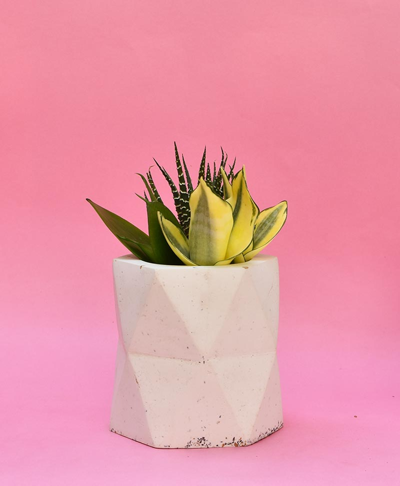 Geometric Concrete Planter Hexagon Large