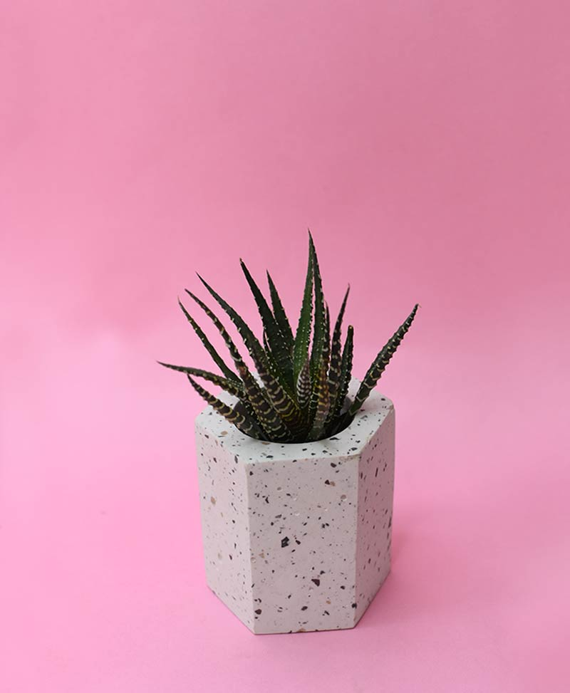 Geometric Concrete Planter Hexagon Straight