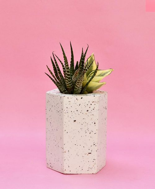 Geometric Concrete Planter Hexagon Straight Large