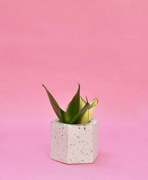 Geometric Concrete Planter Hexagon Straight Mini