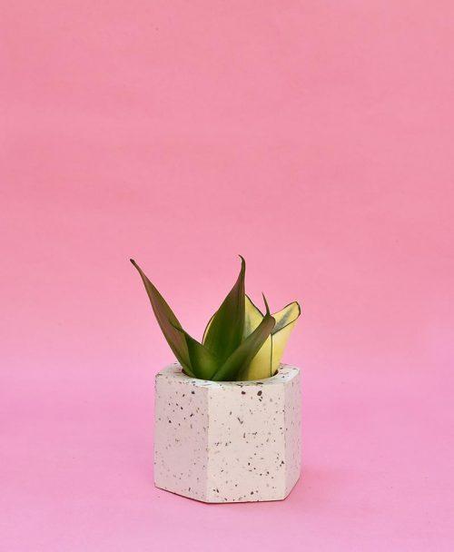 Geometric Concrete Planter Hexagon Straight Mini