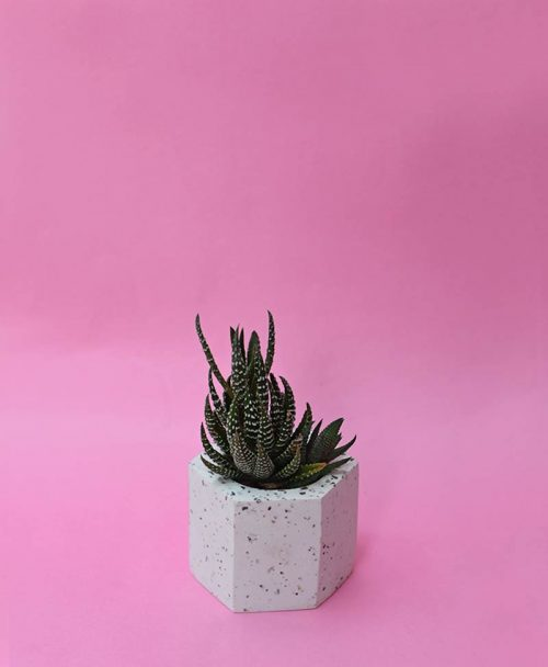 Geometric Concrete Planter Hexagon Straight Mini -2