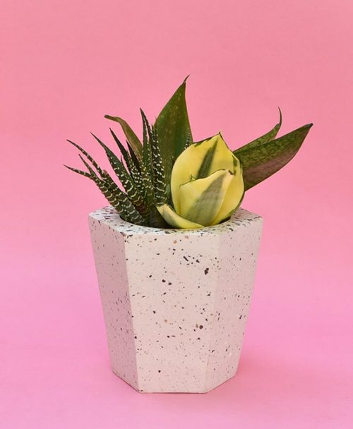 Geometric Concrete Planter Hexagon Tapered Large