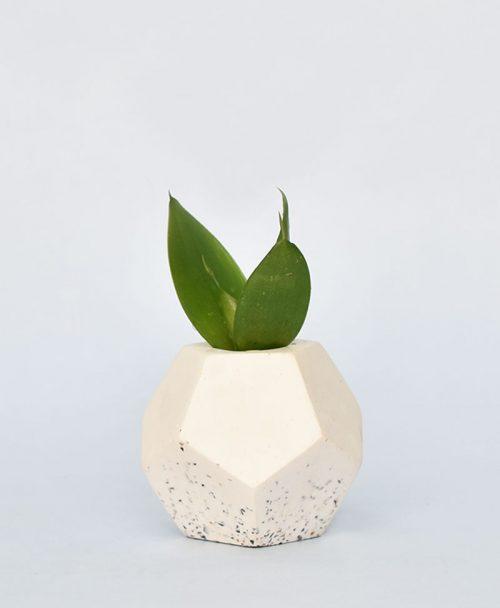 Geometric Concrete Planter Dodecahedron 1