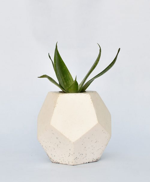 Geometric Concrete Planter Dodecahedron Large 1