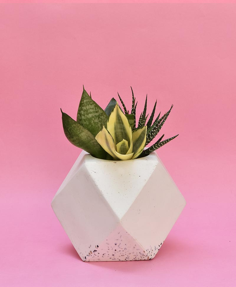 Geometric Concrete Planter Polygon Large