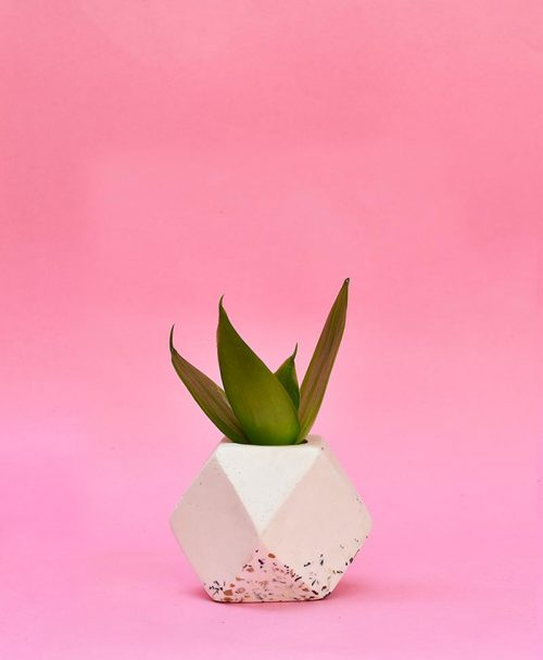 Geometric Concrete Planter Polygon Mini