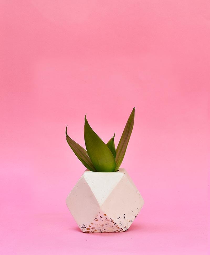 Geometric Concrete Planter Polygon Mini