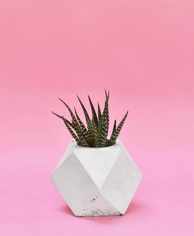 Geometric Concrete Planter Polygon