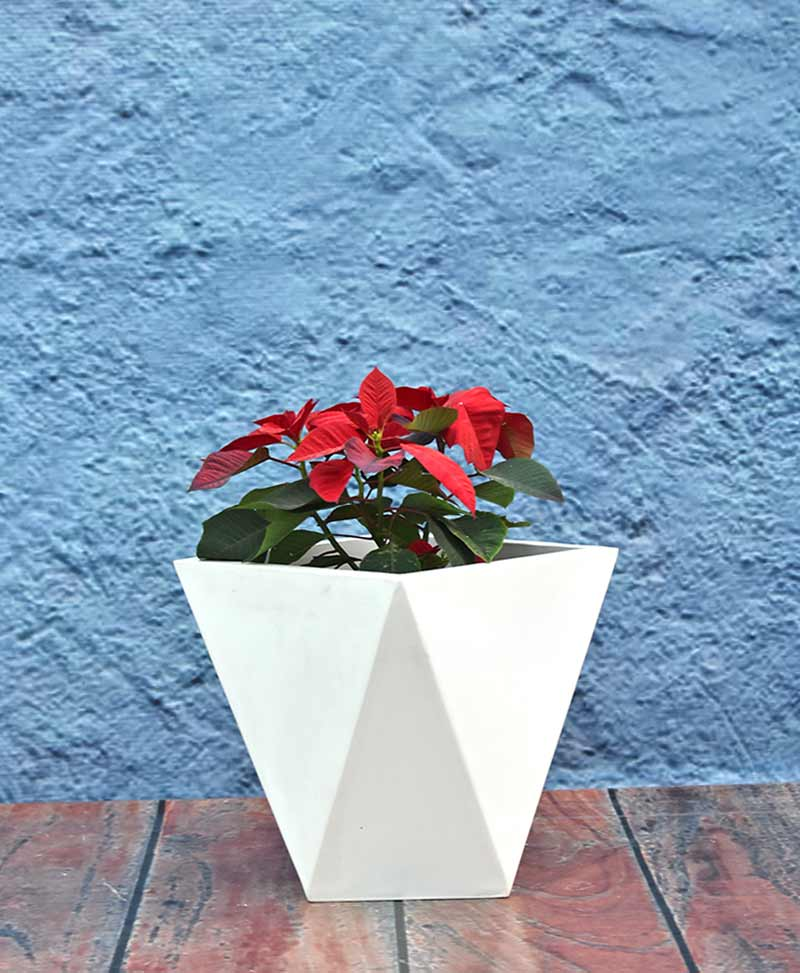 Geometric Shape Diamond Planter 12 inch