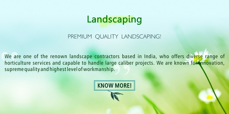 PREMIUM QUALITY LANDSCAPING INDIA